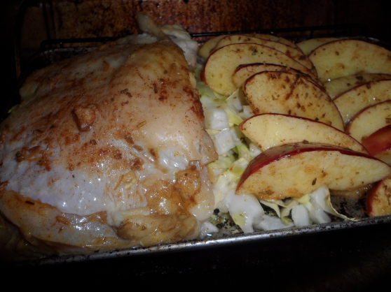 QUICK MEALS: Oven Toaster Roasted Spiced Chicken, Apples and Cabbage ...