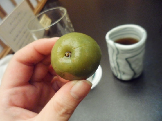 Umeshu - Plum Liquer